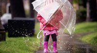 On rainy days we will require students to be outside most of the time and this means that they must come to school prepared for the weather. With the fall […]
